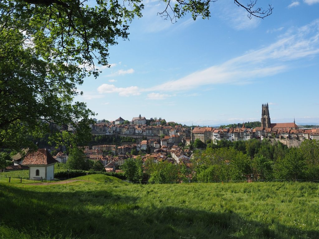 demenager-fribourg